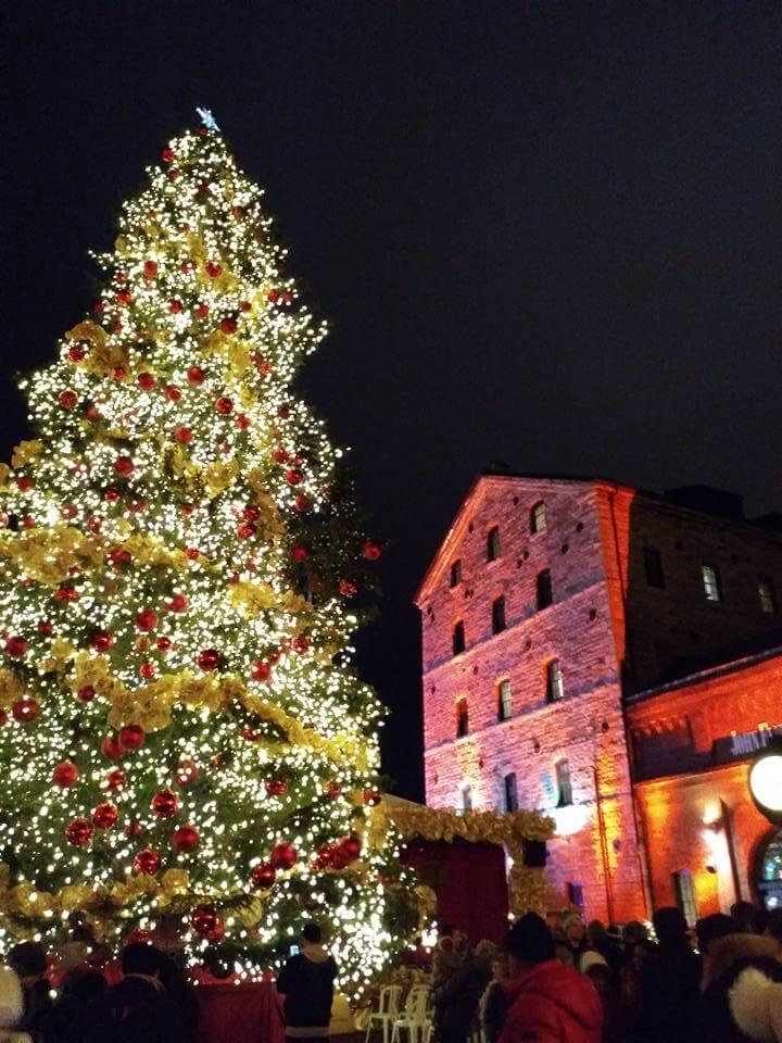 夜クリスマスツリー