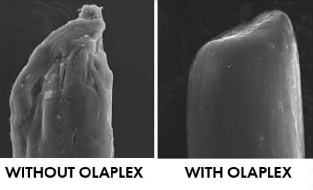 オラプレックス(OLAPLEX)シャンプーNo.4の特徴