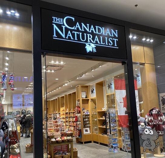 トロントお土産場所③:イートンセンター the canadian naturalist