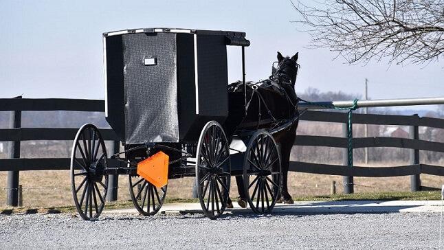 メノナイトの馬車