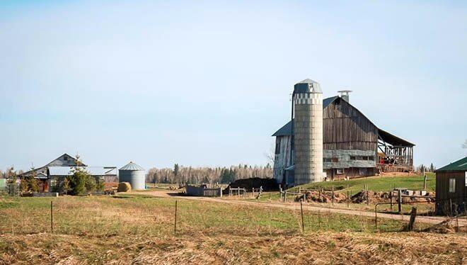 メノナイトの農場