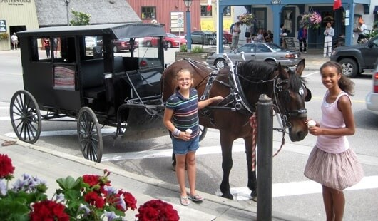 カナダ、セント・ジェイコブスの馬車試乗
